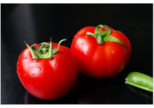 Introduction of Chinese Tomato Industry